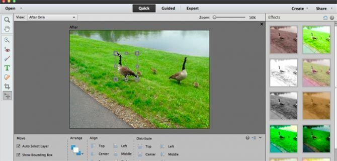 Photoshop Elements Editor de Imágenes